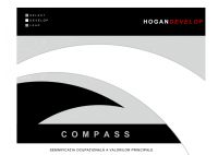 Compass Report (MVPI) - HART Consulting