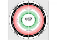 Leadership Versatility Index - HART Consulting
